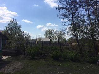 Casa + pământ 25 ari, Nisporeni/Barboieni