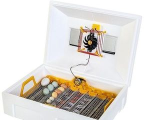 Инкубатор автоматический Теплуша 72 яиц ИБ 12/50 ТАВ/ Питание 220В/12В / Incubator automat+Ovoscop