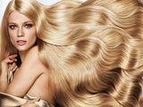 Куплю волосы-cumpar par