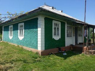 Куплю дом в Сороках до 5 тысяч евро