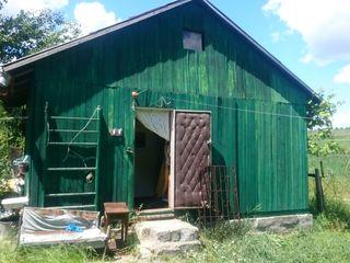 Продам дачу, деревянную, огород , 20 деревьев, рядом озеро, лес, охота, рыбалка, Приватизированная.