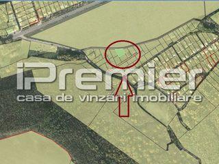 Teren pentru construcții, 6 ari, Colonița, la doar 8000 euro