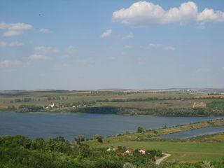 """Сот """"ботна"""" 25 км от Кишинева"""