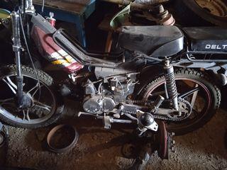 Alpha Moto 44