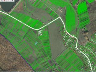 Vind 10 ari teren constructii satu Ulmu r. Ialoveni 5500 euro.