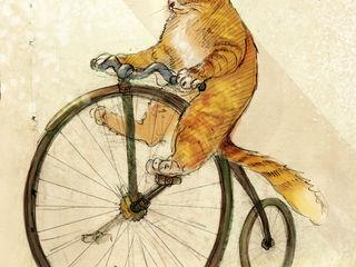 Куплю недорогой б/у велосипед для взрослых или для подростков. Можно не на ходу.
