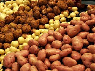 Продам картофель класса премиум,идеального качество