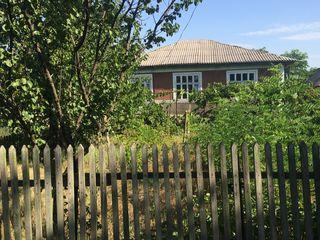 Se vinde casa raionul Singerei satul Tiplesti