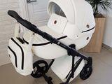 Cea mai largă gamă de cărucioare pentru bebeluși Adamex din Moldova