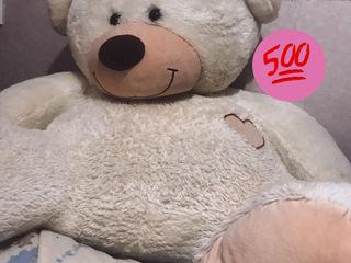 Urs mare de plus