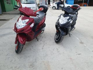 Viper Storm 50cc  150cc