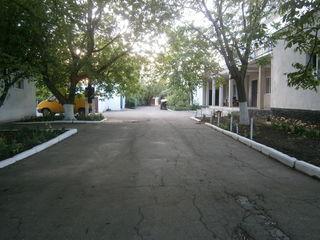 Объект площадь 25га у трассы Кишинев-Одесса (Каушаны)