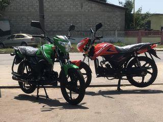 Alpha Moto Pret real 12950 lei