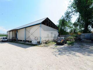 Depozit spre vânzare, 220 mp, Ciocana, 150000 €.