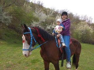 Excursie pe un cal putere la Nistru.
