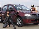 Compania oferă automobile în chirie Dacia/rent a car