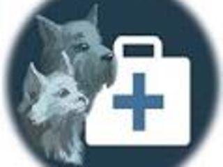 Круглосуточная 2424 качественная ветеринарная помощь с выездом на дом.
