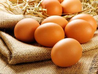 Vind ouă de casă!