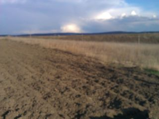 Singera 1.5 hectare la dtum principal si asfaltat cale ferata schimb