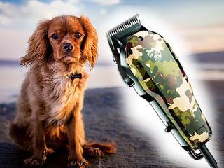 Теперь стрижка животного доступна всегда! Машинка для стрижки животных. Всего лишь 450 лей!