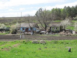 95 соток земли под развитие бизнеса базы отдыха или другое,10 км. от Кишинева