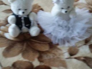Медвежата жених и невеста
