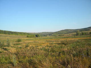 Озеро 10,2 га Калараш-Ориково. Вода спущена, проект. асфальт, газ, эл. зем. берег. приват.39000 ев