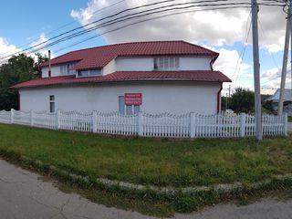 Продается дом-лоджия в Бричанах