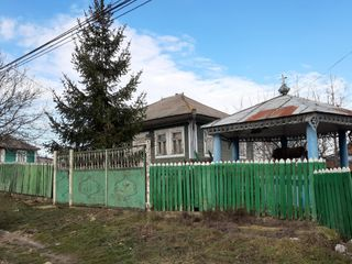 Casa cu sarai batrinesc in centru satul Drochia