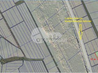 Teren pentru construcții, 24 ari, Traseul Național R6, 700 euro/ar €