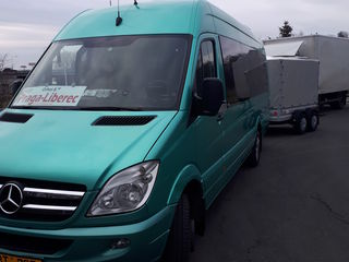 Mercedes 519