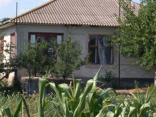 Срочно дом в Трифанешты р. Флорешть 3000 евро. Погреб сарай земля ровная возле школы и церкви Viber