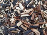 vind lemne de foc specii tare..  In oricare regiune a tarii