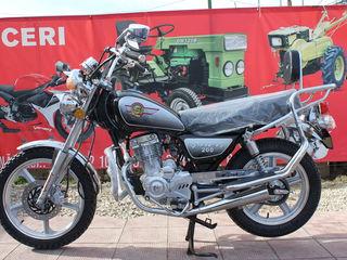 Viper Magazin Motoplus