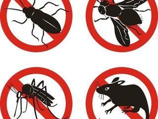 Отпугиватель тараканов, грызунов и насекомых - Pest Reject!