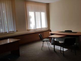 oficiu офис в центре Ботаники