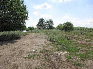 Территория бывшего зернотока.