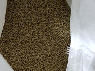 Vindem furaj granulat pentru chinchilla si nisip tratat