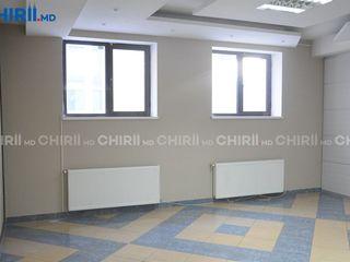 Chirie oficiu , Riscani , Prima Linie , bd.Moscovei  , 36m2