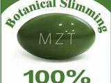 mzt slăbire botanică