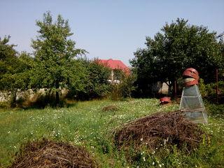 Дачный участок под строительство в Ваду-луй-Водэ