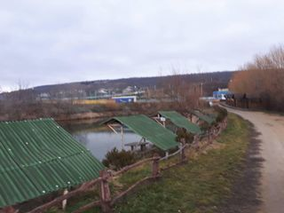 Продается действующий business рыболовное хозяйство или Аренда, 16 км от Кишинева ,Страшены-Рошканы