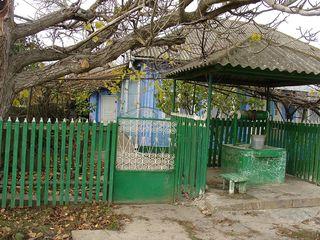 Дом в с. Алексеевка