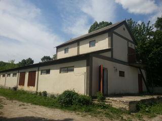 Срочно!!! Цена снижена! Продается мельница вместе с помещением 450м.кв. 14 соток +дом и1.2 га