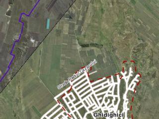 Ghidighici 44 ari zona livezii de  piersicii.