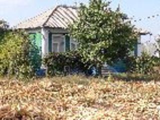 Vind casa in stare foarte buna in satul Zaicani - Riscani