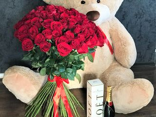 1+1=3 (101 trandafiri+urs gigantic 160cm= sampanie Moet Chandon  (cadou)