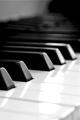 Lectii la sintetizator, pian, acordeon & chitara pentru vip si pe skype
