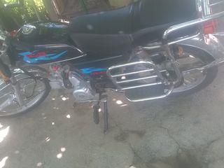 Viper R50