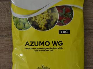Azumo WG, fungicid sulf-80%,  micrograniule  dispersabile in apa. Spania